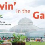 groovin-in-the-garden