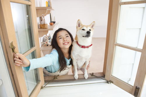 Girl and Her Dog Enjoy Fresh Air Through Open Window